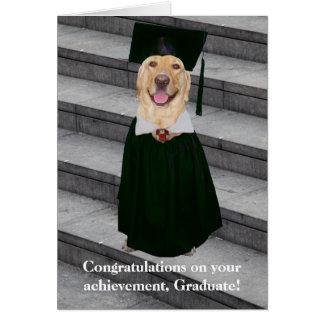 Gullig/rolig hund studenten för anpassade hälsningskort