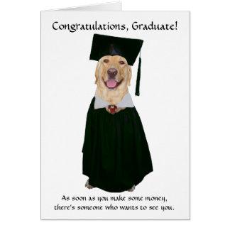 Gullig/rolig hund studenten hälsningskort