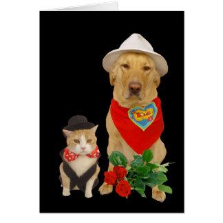 Gullig rolig katt & hund/labbvalentin hälsningskort