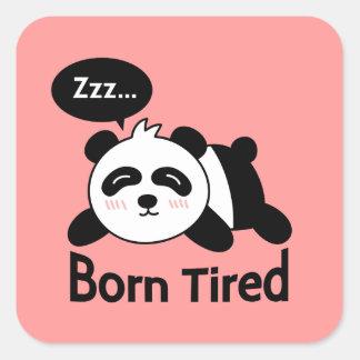 Gullig sova Panda, fött trött Fyrkantigt Klistermärke