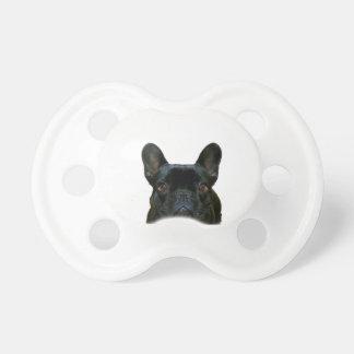 Gullig svart fransk bulldogg napp