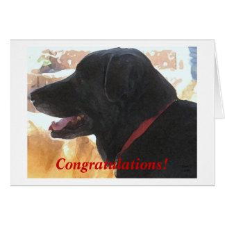 Gullig svart lab studenten för hundgrattis DVM Hälsningskort