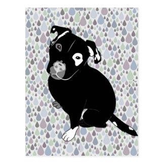 Gullig svart Pitbull valp på Raindropsmönster Vykort