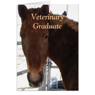 Gullig veterinär- student - häst för ranchlantgård hälsningskort