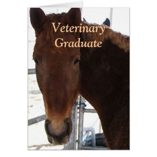 Gullig veterinär- student - häst för ranchlantgård kort