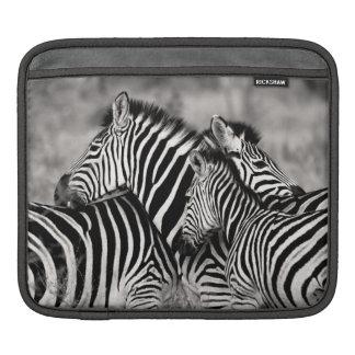 Gullig vit för svart för Safari för iPad Sleeve