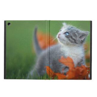 Gulliga babykattungar som utomhus leker i gräset fodral för iPad air