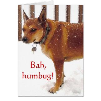 Gulliga Bah, Humbug! Grumpy rött nötkreatur Hälsningskort