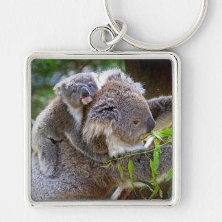 Gulliga Koalas Fyrkantig Silverfärgad Nyckelring