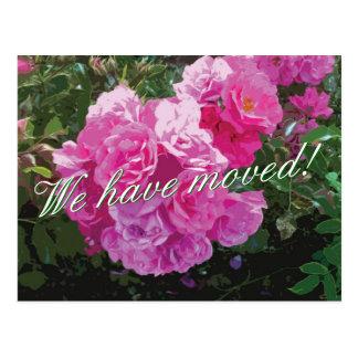 Gulliga rörs vykort med rosa rosblommor