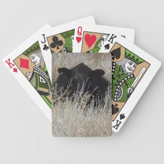 Gulliga svart kalvkor vänder mot westernt spelkort