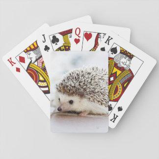 Gulligt babyigelkottdjur casinokort