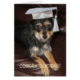 Gulligt hundstudentenkort för barn hälsningskort