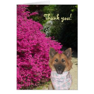 Gulligt hundtackkort hälsningskort