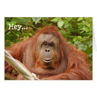 Gulligt kort för orangutanfödelsedaghälsning