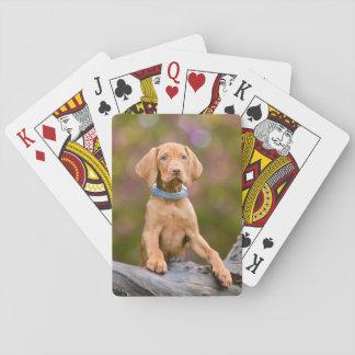 Gulligt puppyeyed ungerskt foto för Vizsla Spelkort