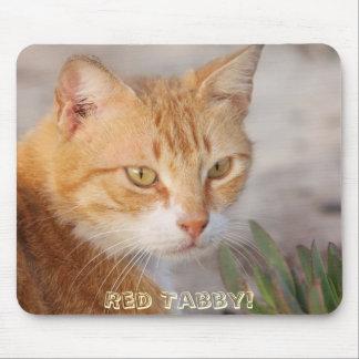 Gulligt! Röd tabby katt Mousepad Musmatta