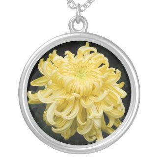 Gult Chrysanthemumhalsband Silverpläterat Halsband