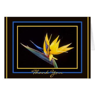 Gult Fågel-av-Paradis fundersamt tackkort Hälsningskort