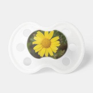 Gult för daisyblommacu napp
