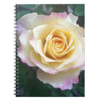 Gult & rosor anteckningsbok