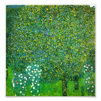 Gustav Klimt ro under Pearträd Fototryck