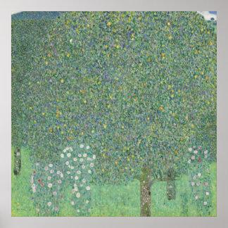 Gustav Klimt - Rosebushes under träden Poster