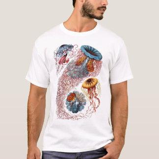 Haeckel manet tee shirt