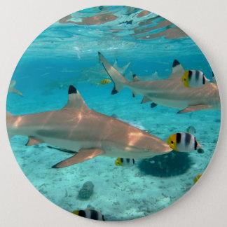 Hajar i den Bora Bora lagunen Jumbo Knapp Rund 15.2 Cm