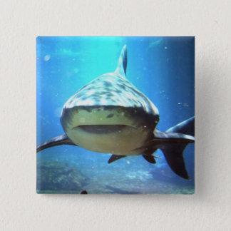 Hajen kvadrerar klämmer fast standard kanpp fyrkantig 5.1 cm