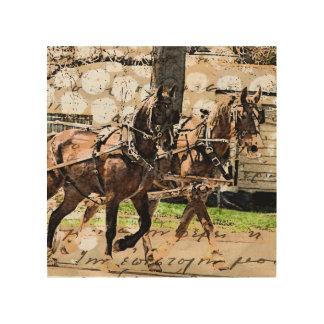 Hake för två häst trätavla