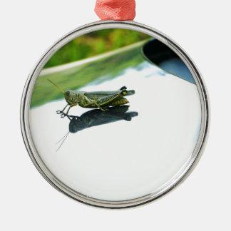 hake som fotvandrar gräshoppan julgransprydnad metall