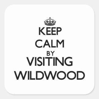 Håll lugn, genom att besöka Wildwood ny - jerseyen Fyrkantigt Klistermärke