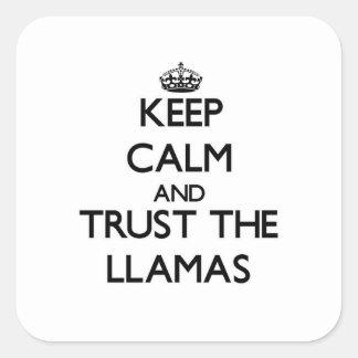 Håll lugn och lita på llamasna fyrkantigt klistermärke
