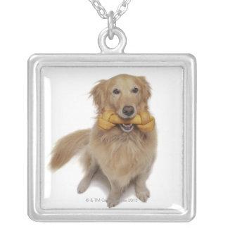 Hållande ben för guld- Retrieverhund i mun Silverpläterat Halsband