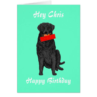 Hållande födelsedaggåva för hund hälsningskort