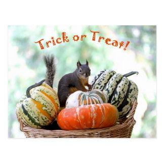 Halloween ekorre vykort