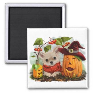 Halloween för Chihuahuas Magnet
