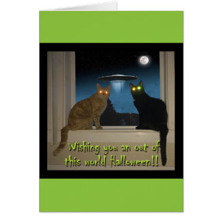 Halloween kattkort med svart & orange katter OBS kort