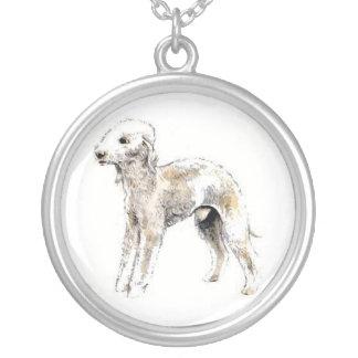 Halsband för Bedlington Terrier