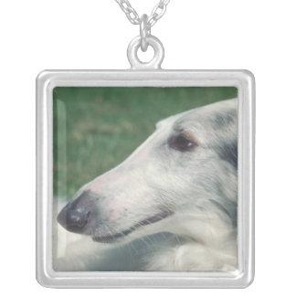 Halsband för Borzoihundansikte