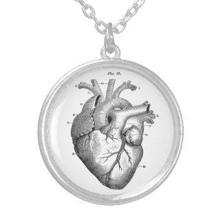 Halsband för hjärta för vintage Anatomical