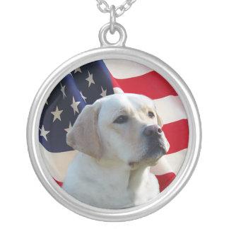 Halsband för Labrador Retriever