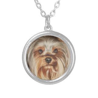Halsband för målning för Yorkshire Terrier