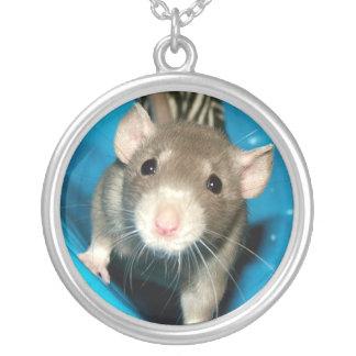 Halsband för råtta för babyNoah husdjur