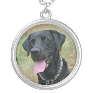 Halsband för svart för hund för Labrador Retriever