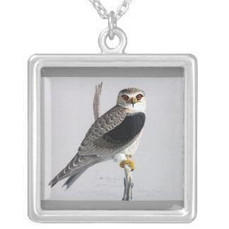 Halsband-Vintage Chicago Konst-Abyssinian fåglar Silverpläterat Halsband