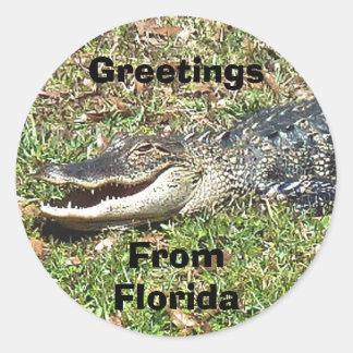 Hälsningar för Florida alligatorklistermärke från Runt Klistermärke