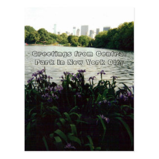 Hälsningar från Central Park i New York City Vykort