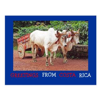 Hälsningar från den Costa Rica vykortet Vykort